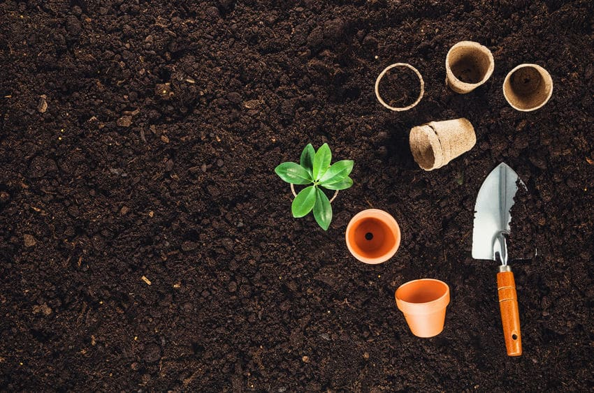 Tips For Soil Conditioning