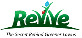 Organic Lawn Fertilizer Best Lawn Care Products From Revive