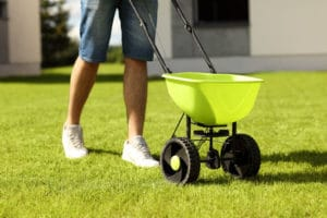 Fertilizing Your Lawn For Spring
