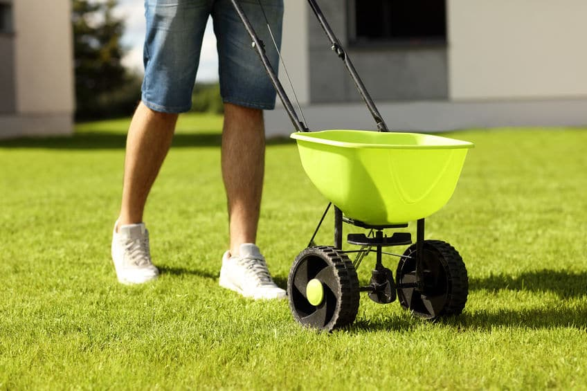 How And When To Start Fertilizing Your Lawn In Spring Revive Lawn Care Products