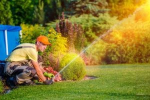 Watering After Applying Fertilizer To Lawn