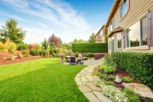 Lawn Care Products Advice