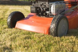 Organic Fertilizer And Grass Mowing Tips