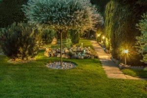 Use Organic Lawn Care Products To Keep Grass Green