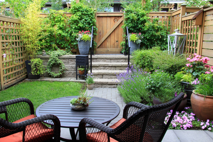 Give Houseplant Soil Treatment Before Moving Inside For Fall
