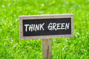 Think Green Organic Lawn Products Care