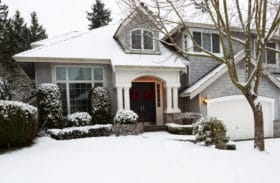 Revive For Lawn Guard Against Ice Melting Products