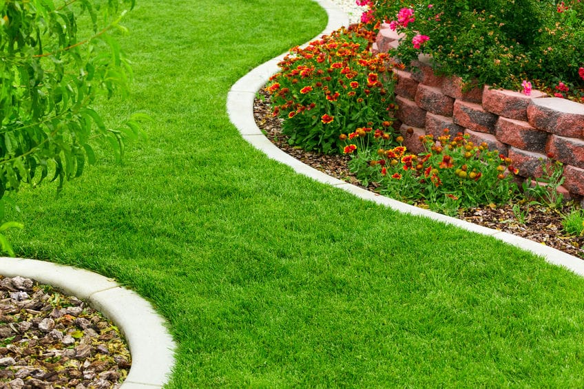 Benefits Of Lawn Organic Fertilizer