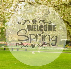 Spring revive lawn products