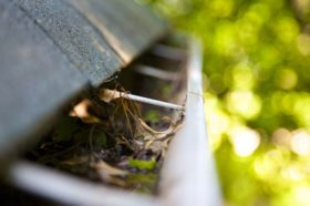 gutter protection revive lawn