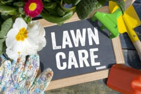 Lawn care fertilizer tips rust stain removal