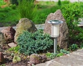 organic gardening using liquid fertlizer