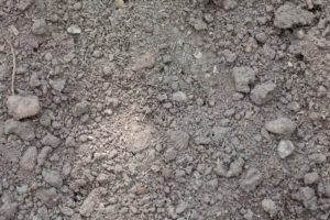 compact soil revive products