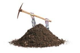 soil treatment lawn fertilizer use