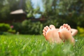 organic liquid fertilizer little feet can enjoy