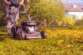 best time to mow lawn care products