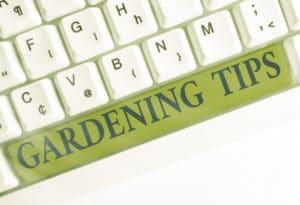 Gardening Tips Lawn Drought Fertilizers Watering