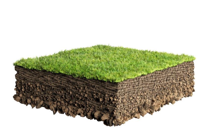 soil treatment for superb spring lawn