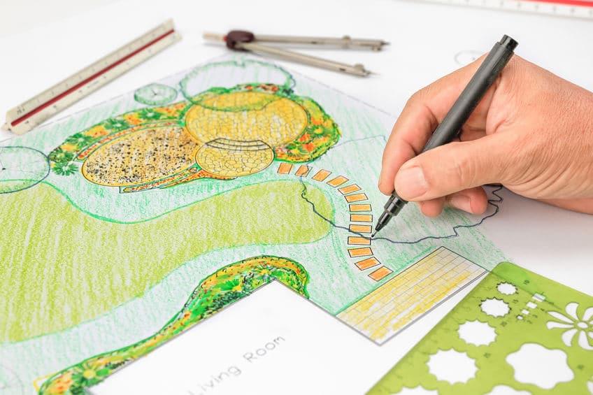 landscape planning Spring drought tolerant grass