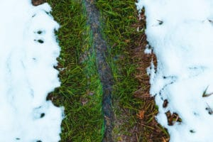 snow melt revive products green benefits
