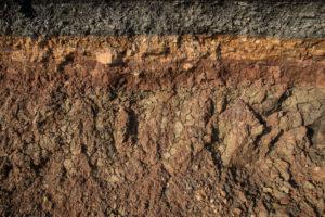 soil wetting treatment good ground