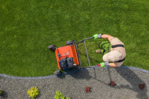 lawn aerating grass cut low revive products used